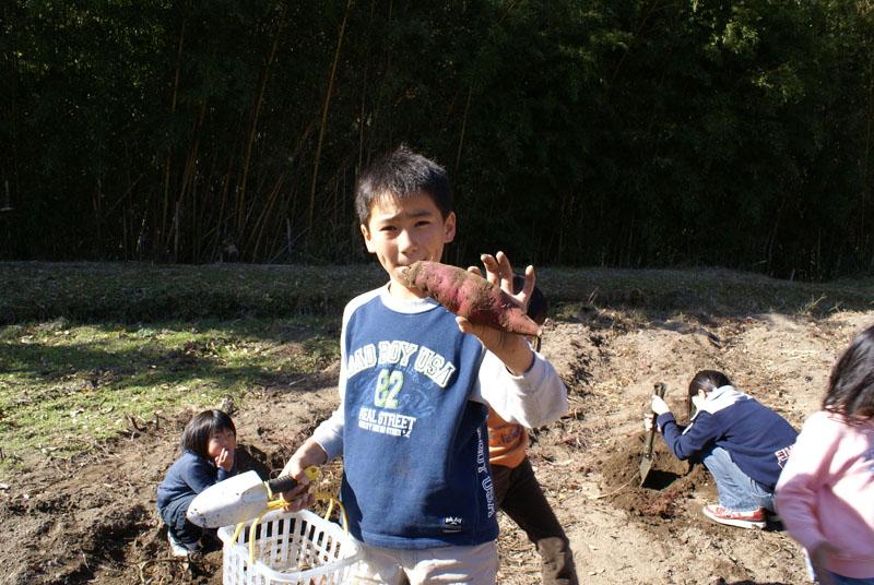 山鳥の森オートキャンプ場 芋掘り