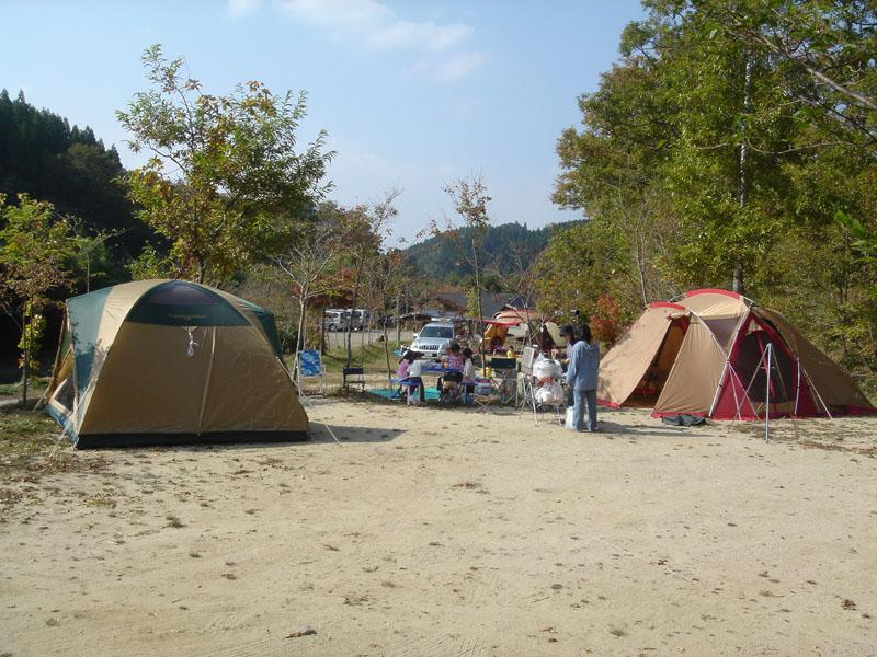 山鳥の森オートキャンプ場 フリーAサイト