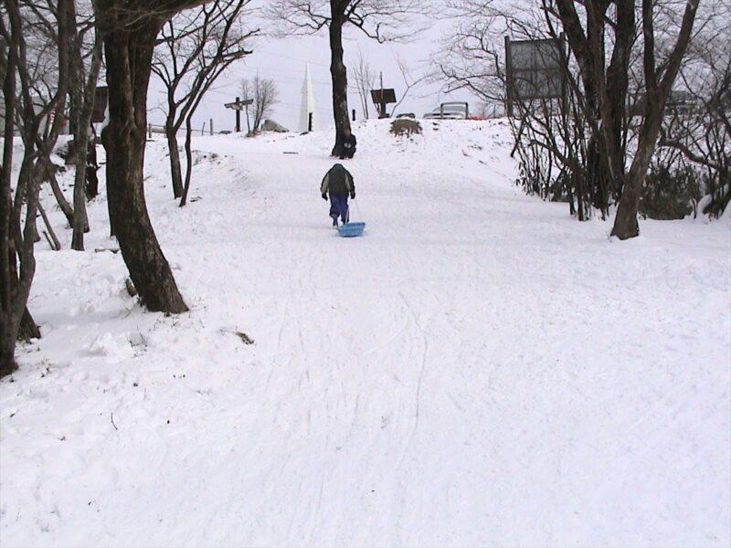 背振山 雪遊び ダイキ