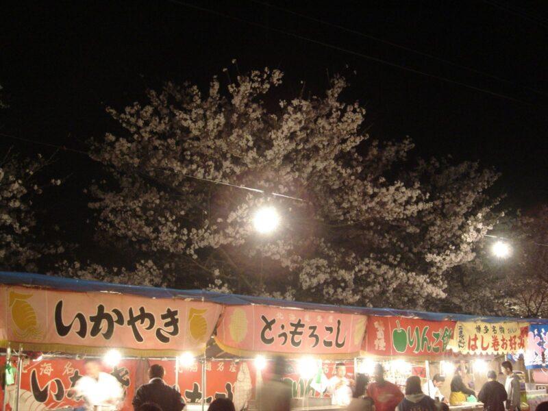 甘木公園 夜桜