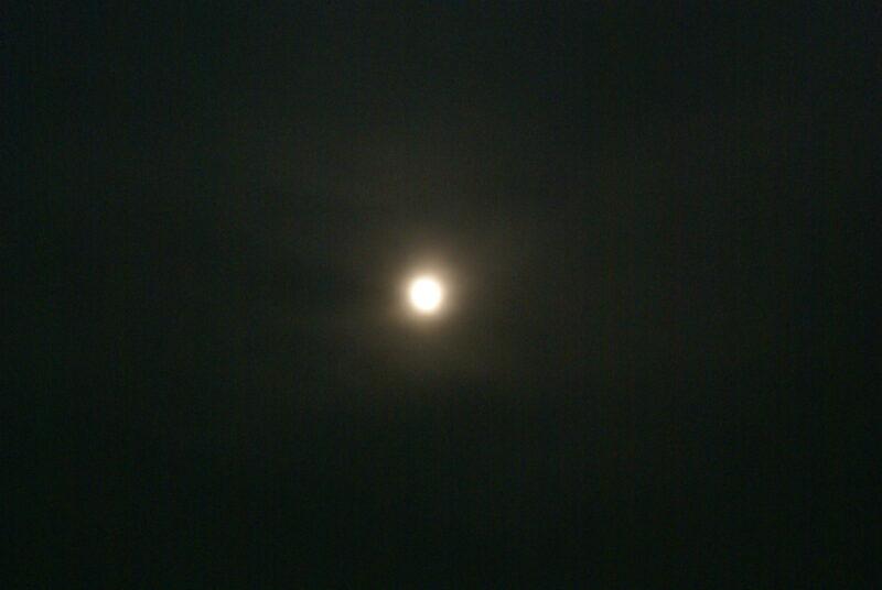 オートキャンプ場高原の里 月