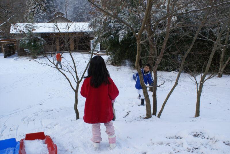 山鳥の森オートキャンプ場 雪合戦