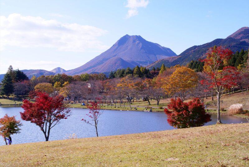 志高湖 紅葉 由布岳
