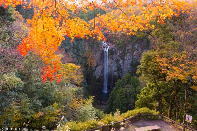 福貴野の滝 紅葉