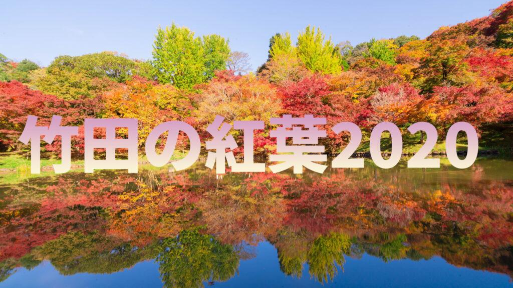 竹田の紅葉2020