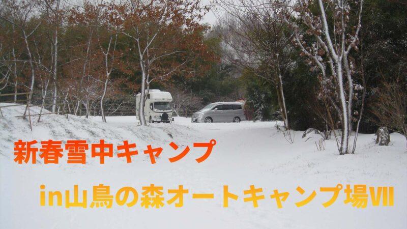 山鳥動画07